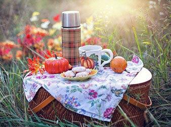 8. Picknick